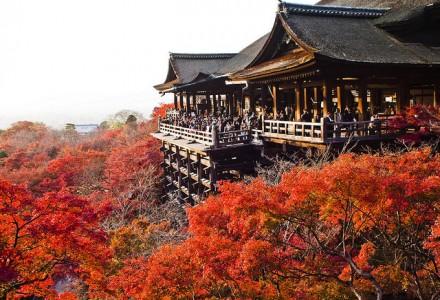 Kyoto- cố đô của những nét truyền thống Nhật Bản