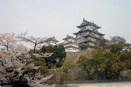 Lâu đài Nagoya Nhật Bản - một phần văn hóa không thể thiếu của đất nước Nhật Bản